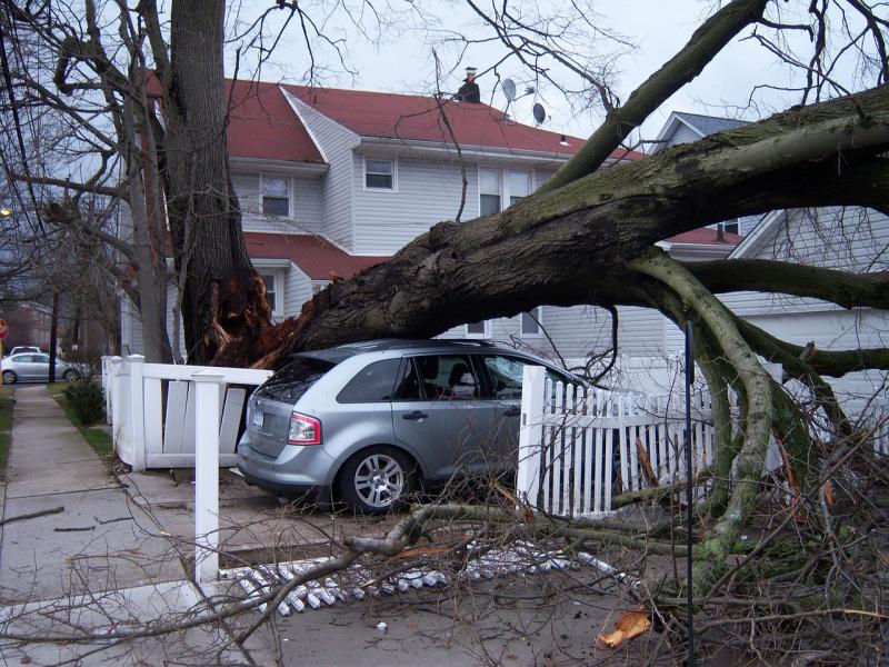 Zniszczenia po wichurze - pomoże ubezpieczenie od huraganu